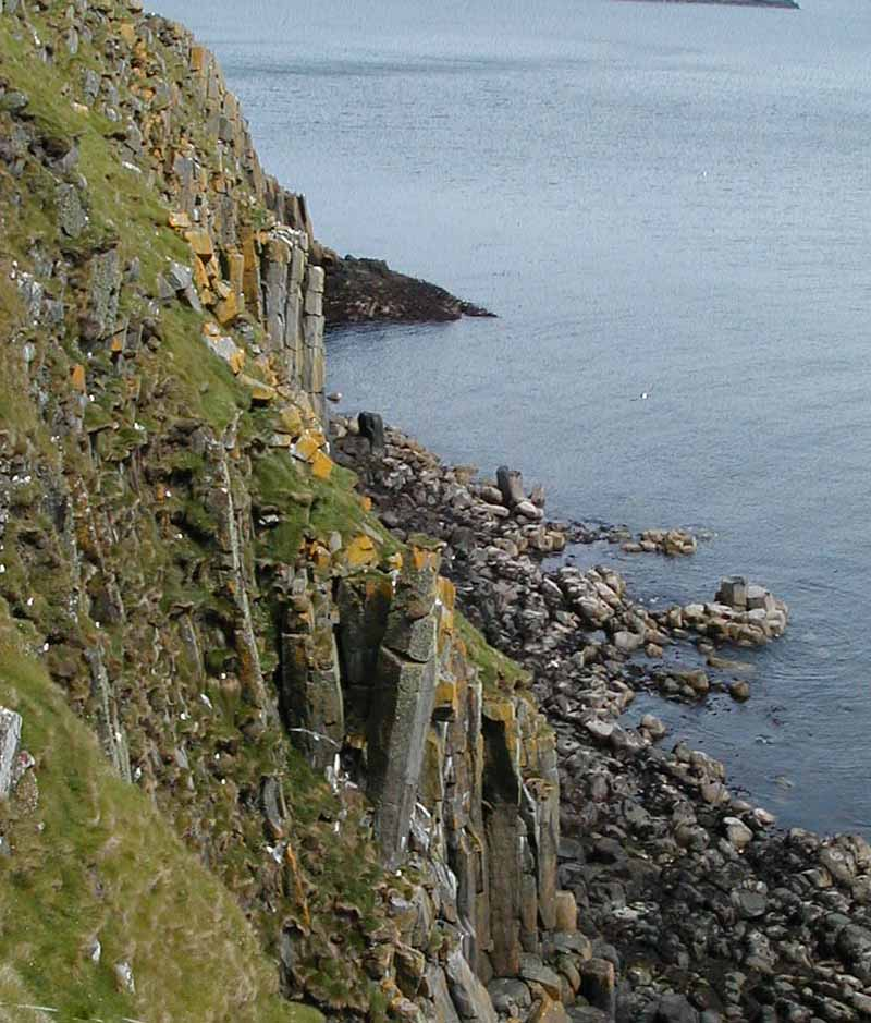 Puffins nesting on the Shiants