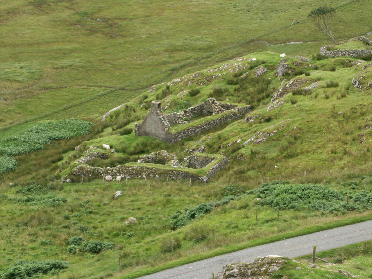 Calbost Blackhouse Ruins